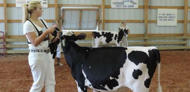 Blooming Prairie junior Kalyn  Naatz recently earned a second-place finish at the FFA State Convention handling dairy cattle.