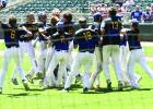 Members of the Hayfield baseball team celebrated after winning the Minnesota State Class A Baseball Championship by beating New York Mills 7-4.